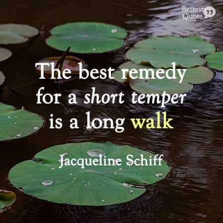 The best remedy for a short temper is a long walk. Jacqueline Schiff