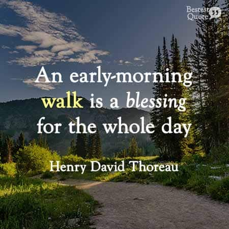 An early-morning walk is a blessing for the whole day. Henry David Thoreau