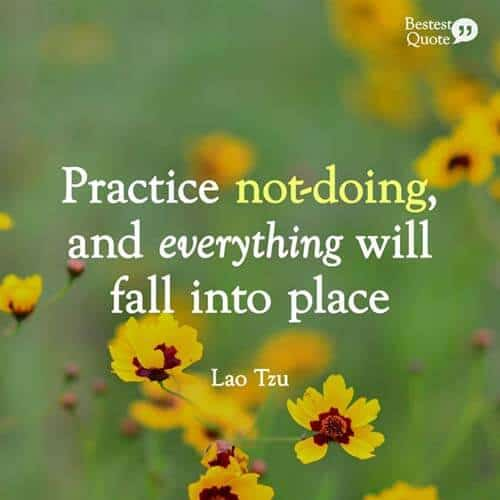 Practice not doing and everything will fall into place. Lao Tzu. Tao Te Ching