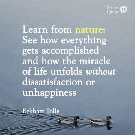 """""""Learn from nature: See how everything gets accomplished and how the miracle of life unfolds without dissatisfaction or unhappiness."""" Eckhart Tolle"""
