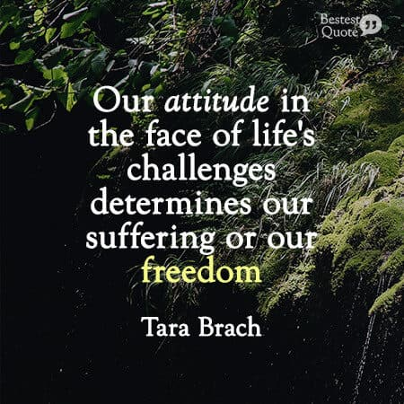 """""""Our attitude in the face of life's challenges determines our suffering or our freedom."""" Tara Brach"""