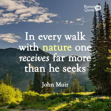 """""""In every walk with nature one receives far more than he seeks."""" John Muir"""