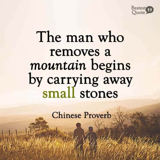 """""""The man who removes a mountain begins by carrying away small stones."""" Chinese Proverb"""