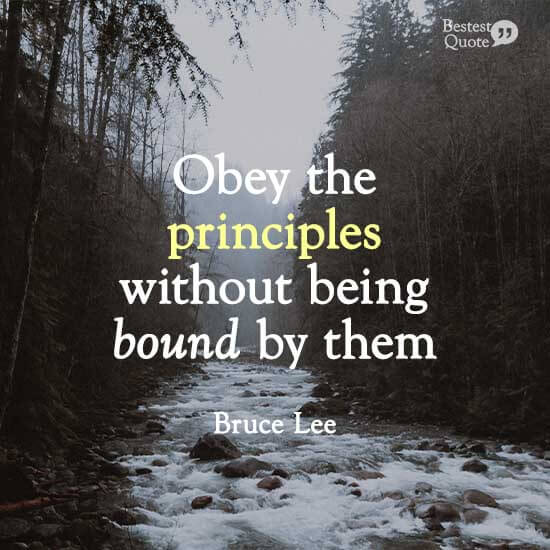 """""""Obey the principles without being bound by them."""" Bruce Lee"""