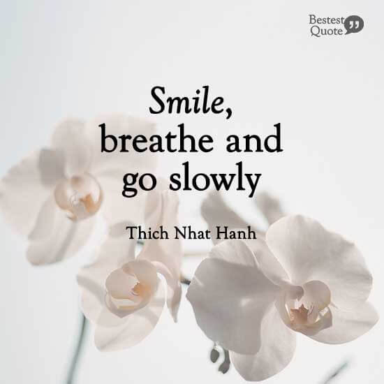 """""""Smile, breathe and go slowly."""" Thich Nhat Hanh"""