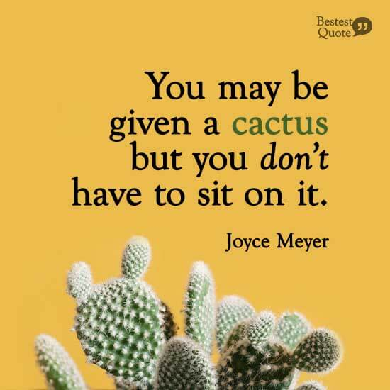"""Being negative only makes a negative journey more difficult. You may be given a cactus but you don't have to sit on it."" Joyce Meyer"