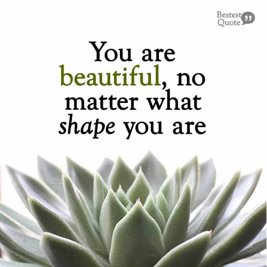 """You are beautiful, no matter what shape you are."""